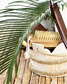 Palm leaf, bathing accessories and comb