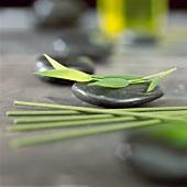 Bamboo leaf on massage stone, incense sticks