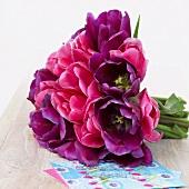 Bunch of tulips ('Negrita' and 'Innuendo')