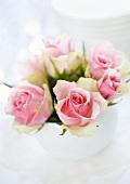 Ein Sträusschen rosafarbene Rosen als Tischdeko