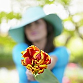 Woman with tulip in garden