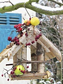 Bird house with rose hips, apples and firethorn in tree