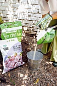 Woman tipping bonemeal (organic fertiliser) into zinc bucket