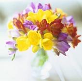 Vase of freesias