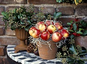 Winter decoration: pot of apples and ivy in metal vase