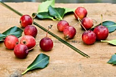 Materials for Xmas wreath of holly leaves & ornamental apples