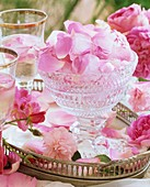 Fresh rose petals & rose petals frozen in ice cubes in bowl