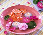 Geranium flowers and leaves and floating candles in bowl