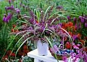 Arrangement of purple buddleia and grasses