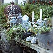 Christmas decorations in garden: candles, lanterns and strings of beads