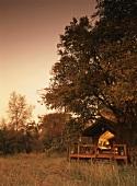 Wooden cabin with veranda in wild landscape