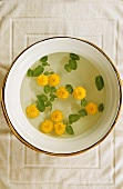 Yellow flowers floating in bowl