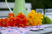 Red and yellow nasturtiums on a garden bench