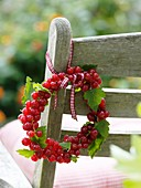 Small wreath of redcurrants on garden chair
