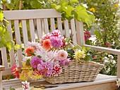 Basket of dahlias on garden seat