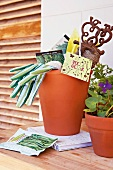 Terracotta pot full of garden utensils