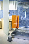 Shower cubicle and metal towel rail