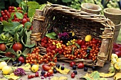 Basket of berries and fruit used as autumn decoration
