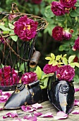 Garden decoration: iron shoe planters, wire basket, roses