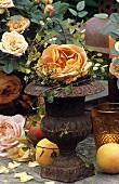 Rose 'Pat Austin' in iron vase