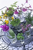Edible flowers and leaves in glasses of water