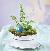 Coloured Easter eggs on moss in a dish