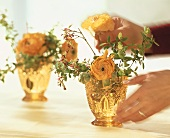 Hands putting ranunculi and maple twigs into a vase