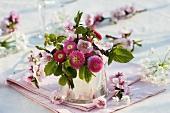 Sträusschen von Bellis, Pfirsichblüten und Buchenlaub