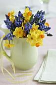 Narcissi and grape hyacinths in milk jug