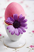 A pink Easter egg in eggcup with flower