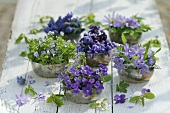 Silver bowls filled with various blue & purple flowers