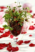 Posy of wild strawberries in a glass