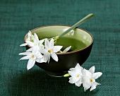 Narcissi lying across a bowl of water with flowers