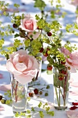 Roses, wild strawberries and lady's mantle in glasses