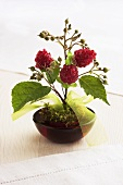Table decoration featuring raspberry twigs and moss