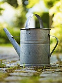 A watering can on a garden path