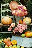 Herbst-Stillleben: Kürbisse, Rosen und Dahlien