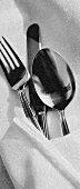 A knife, fork and spoon wrapped in a napkin
