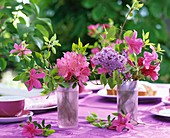 Rhododendron, Azaleen und Flieder in Gläsern auf Kaffeetisch
