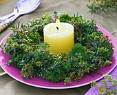 Herb wreath (thyme, rosemary and parsley) around a candle