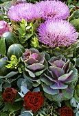 Arrangement of flowering artichokes, ornamental cabbages & roses