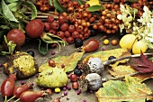 Autumn still life with berries, leaves and seed heads