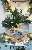Weihnachtliche Tischdeko mit Alpenveilchen