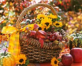 Basket of sunflowers, apples and rose hips