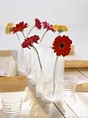 Vases of gerbera daisies