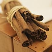 Bundle of cinnamon sticks (close-up)