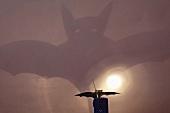 Schatten einer Fledermaus an der Wand
