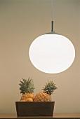 Pineapple in fruit bowl