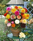 Large arrangement of dahlias in terracotta vase
