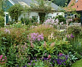 Colourful summer garden with astilbe, violas, phlox